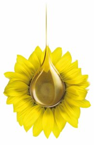 01_05_oil_sunflower